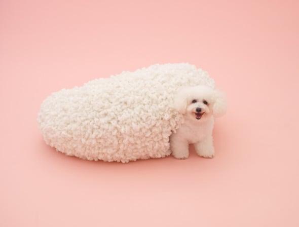 Casa para perros de Kazuyo Sejima