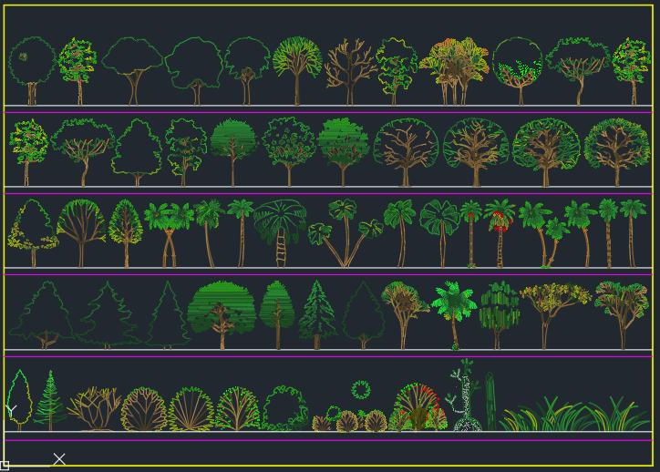 arboles y plantas