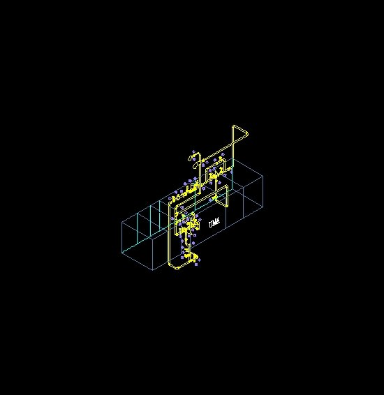 Tuberio isometrico