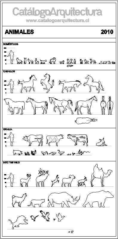 bloques de animales