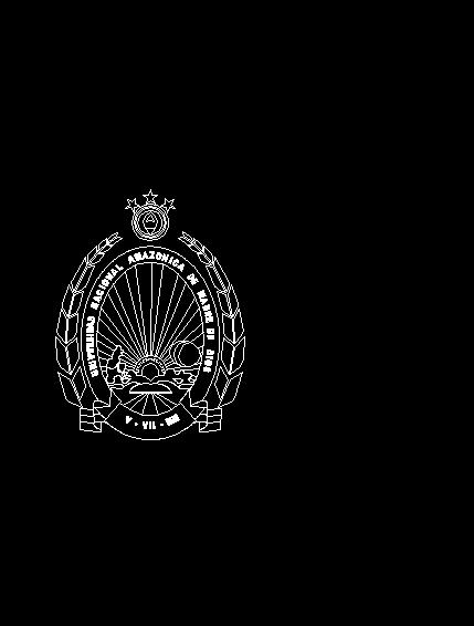Logo Unamad