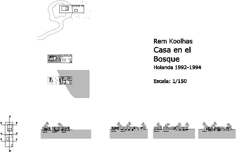 casa en el bosque de Rem Koolhaas