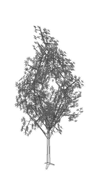 Árbol en 3D para AutoCAD