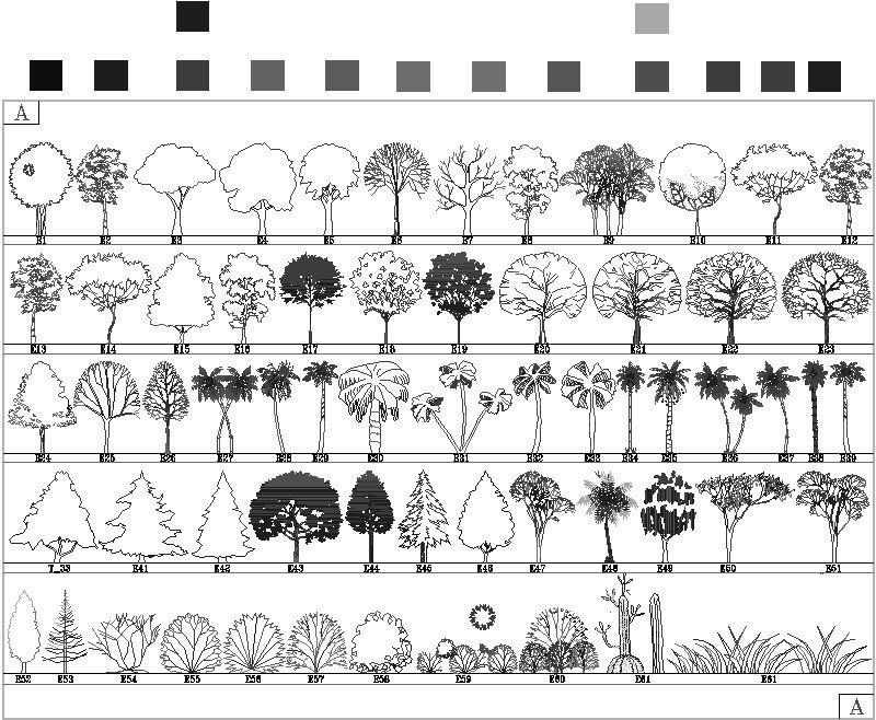 arboles y palmas